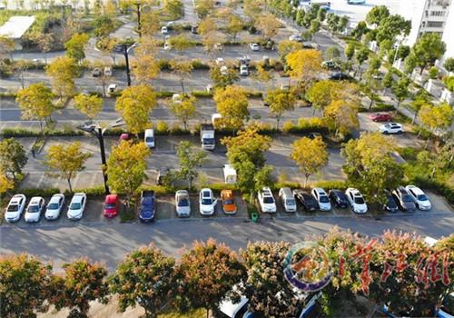 秋色装扮生态停车场